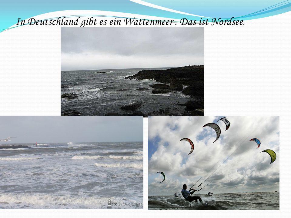 In Deutschland gibt es ein Wattenmeer. Das ist Nordsee.
