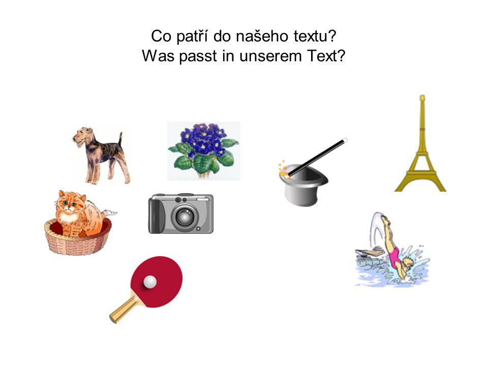 Vymysli co nejvíc otázek.Ich heiße Trudi.Ich bin 8 Jahre alt und wohne in Cham.