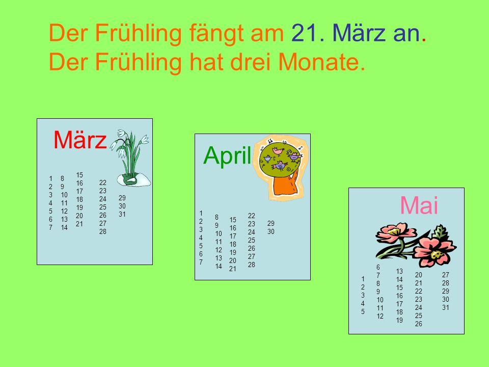 Der Frühling fängt am 21. März an. Der Frühling hat drei Monate. März April Mai 12345671234567 8 9 10 11 12 13 14 15 16 17 18 19 20 21 22 23 24 25 26
