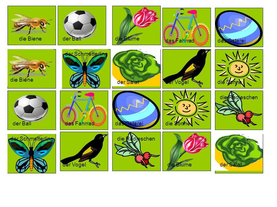 die Biene der Schmetterling die Blume der Vogel die Sonne der Ball das Fahrrad das Osterei die Radieschen der Salat