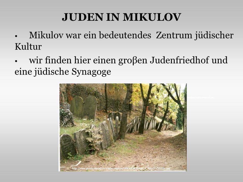 JUDEN IN MIKULOV Mikulov war ein bedeutendes Zentrum jüdischer Kultur wir finden hier einen groβen Judenfriedhof und eine jüdische Synagoge http://1.bp.blogspot.com/_TSs17sO0Mt4/SwZG2Yq7EjI/AAAAAAAAA1w/PLuoBeBdbH4/s400/Munster1.jpg http://www.pensionhotel.cz/imgdescription/006/i000006640-1_4fee37c5f312c.jpg