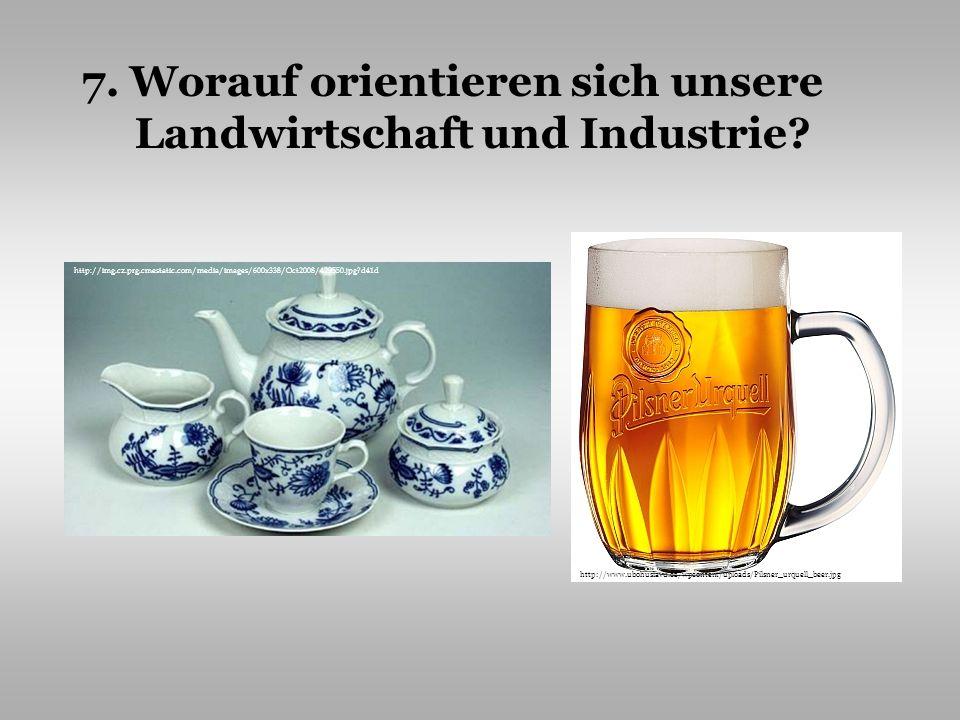 7. Worauf orientieren sich unsere Landwirtschaft und Industrie? http://img.cz.prg.cmestatic.com/media/images/600x338/Oct2008/429550.jpg?d41d http://ww