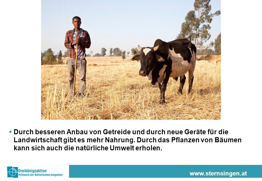 www.sternsingen.at Durch besseren Anbau von Getreide und durch neue Geräte für die Landwirtschaft gibt es mehr Nahrung. Durch das Pflanzen von Bäumen