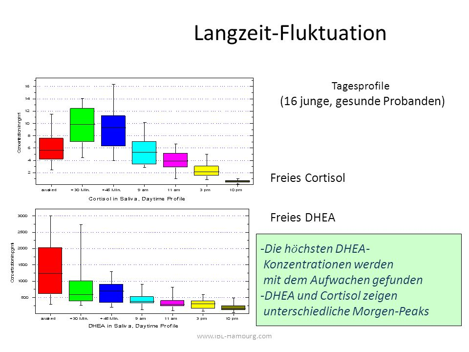 www.IBL-Hamburg.com Langzeit-Fluktuation Tagesprofile (16 junge, gesunde Probanden) Freies Cortisol Freies DHEA -Die h ö chsten DHEA- Konzentrationen werden mit dem Aufwachen gefunden -DHEA und Cortisol zeigen unterschiedliche Morgen-Peaks