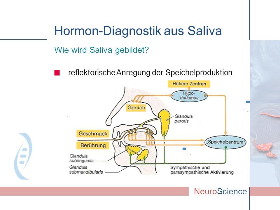Hormon-Diagnostik aus Saliva Wie wird Saliva gebildet? NeuroScience reflektorische Anregung der Speichelproduktion