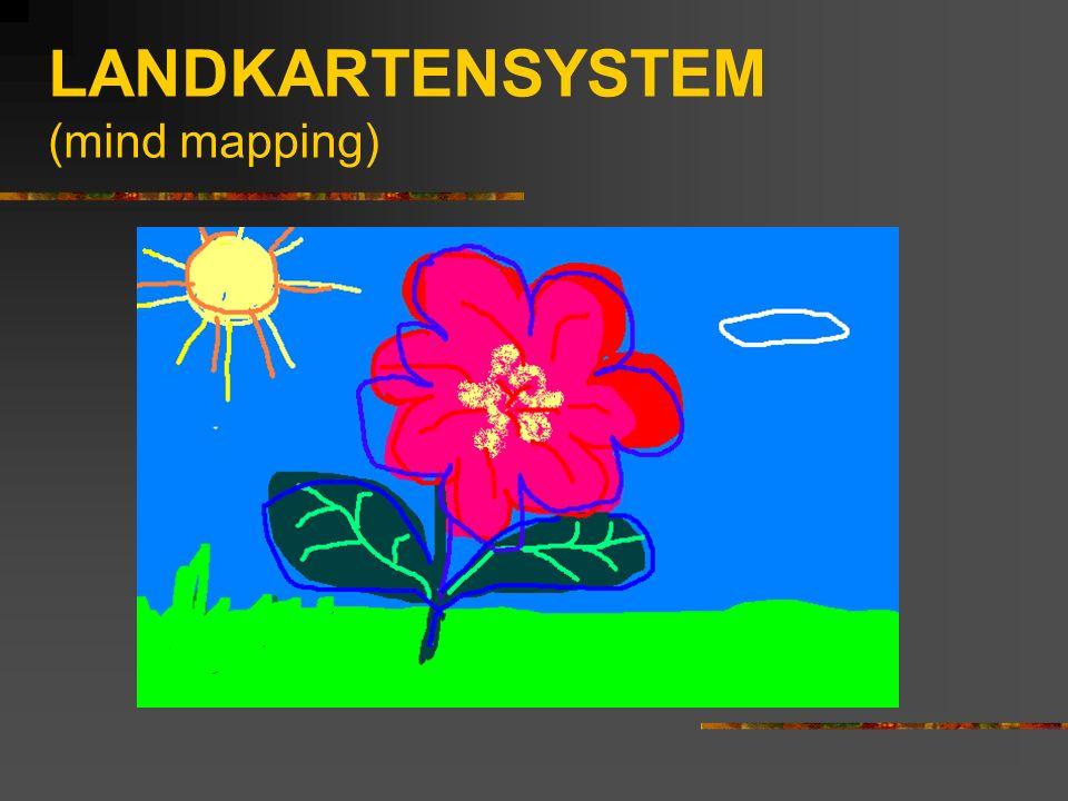 LANDKARTENSYSTEM Unter einem riesigen blauen Himmel befindet sich eine grüne Wiese mit einer kleinen roten Blume mit winzigen gelben Staubgefäßen Grobes Überfliegen des Lehrstoffes Genaueres Lernen Detailliertes Durchgehen In die Einzelheiten gehen