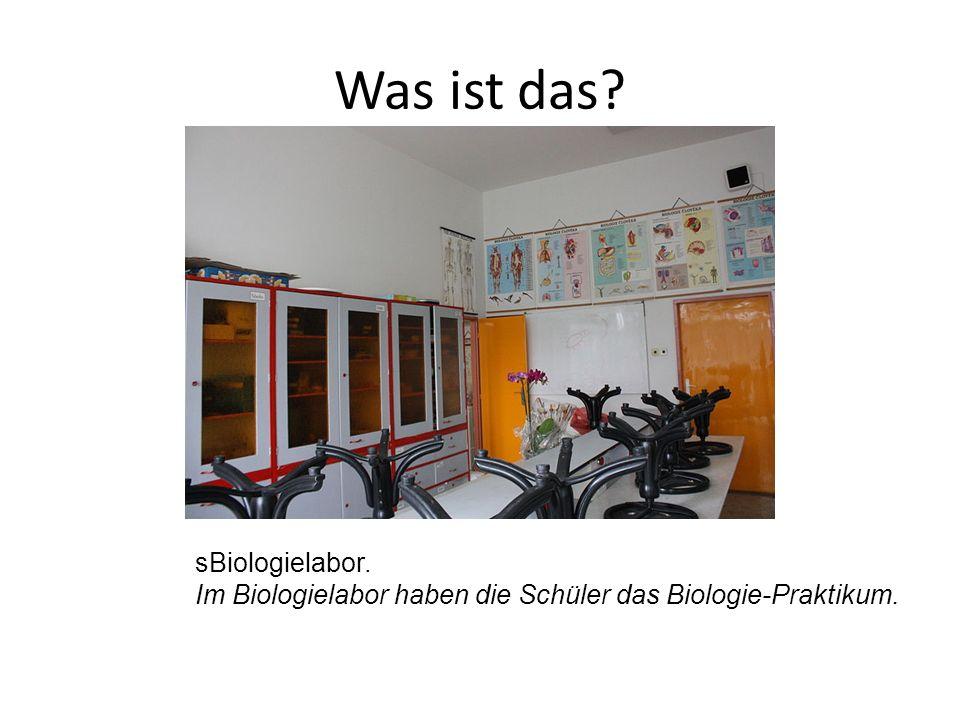 sBiologielabor. Im Biologielabor haben die Schüler das Biologie-Praktikum.