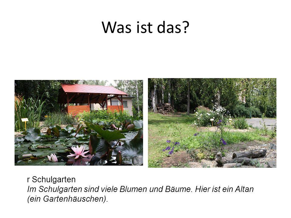 r Schulgarten Im Schulgarten sind viele Blumen und Bäume. Hier ist ein Altan (ein Gartenhäuschen).