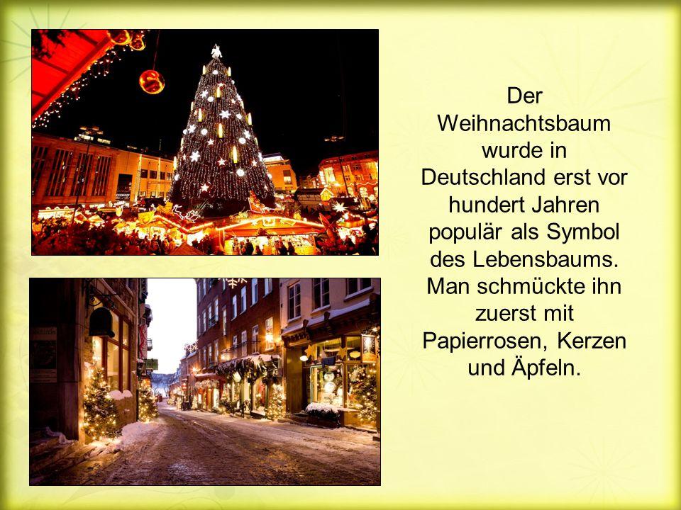 Der Weihnachtsbaum wurde in Deutschland erst vor hundert Jahren populär als Symbol des Lebensbaums.