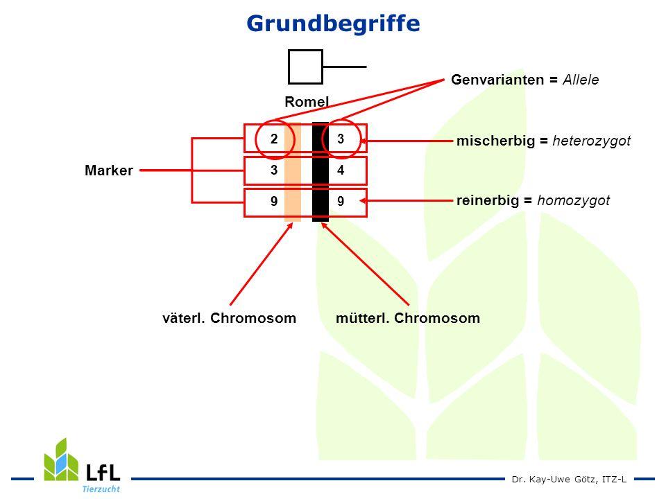 Dr.Kay-Uwe Götz, ITZ-L Romel 239239 349349 239239 Marker väterl.