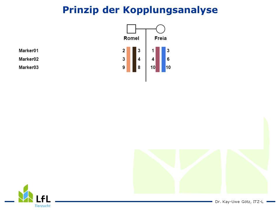 Dr. Kay-Uwe Götz, ITZ-L Prinzip der Kopplungsanalyse