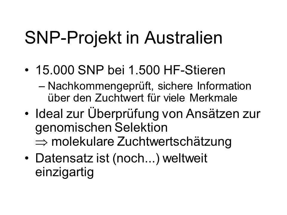 SNP-Projekt in Australien 15.000 SNP bei 1.500 HF-Stieren –Nachkommengeprüft, sichere Information über den Zuchtwert für viele Merkmale Ideal zur Über