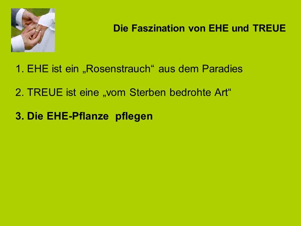 Die Faszination von EHE und TREUE 3. Die EHE-Pflanze pflegen Besondere ZEITEN zu zweit