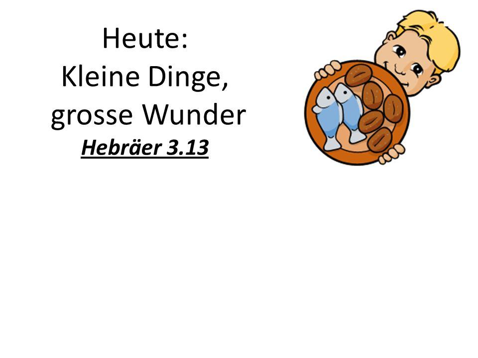 Heute: Kleine Dinge, grosse Wunder Hebräer 3.13