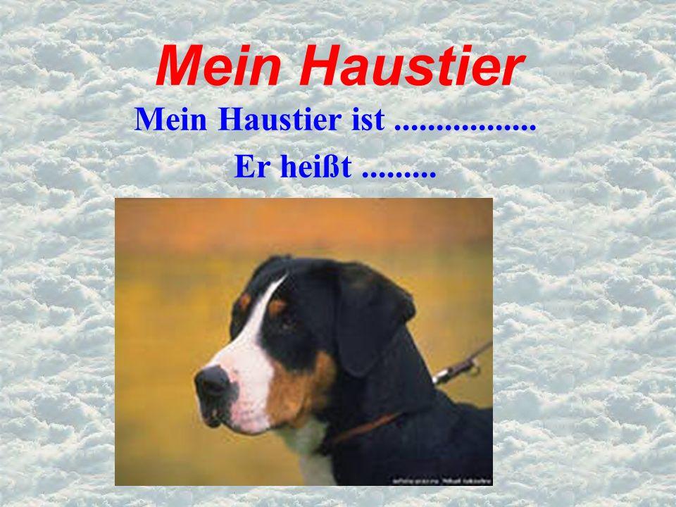 Mein Haustier Mein Haustier ist................. Er heißt.........