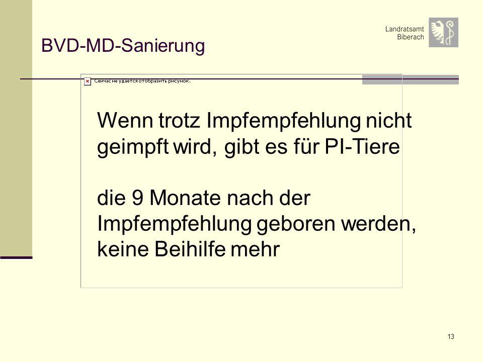 13 BVD-MD-Sanierung Wenn trotz Impfempfehlung nicht geimpft wird, gibt es für PI-Tiere die 9 Monate nach der Impfempfehlung geboren werden, keine Beihilfe mehr