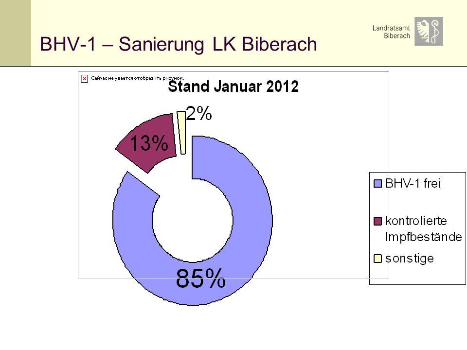 16 BHV-1 – Sanierung LK Biberach