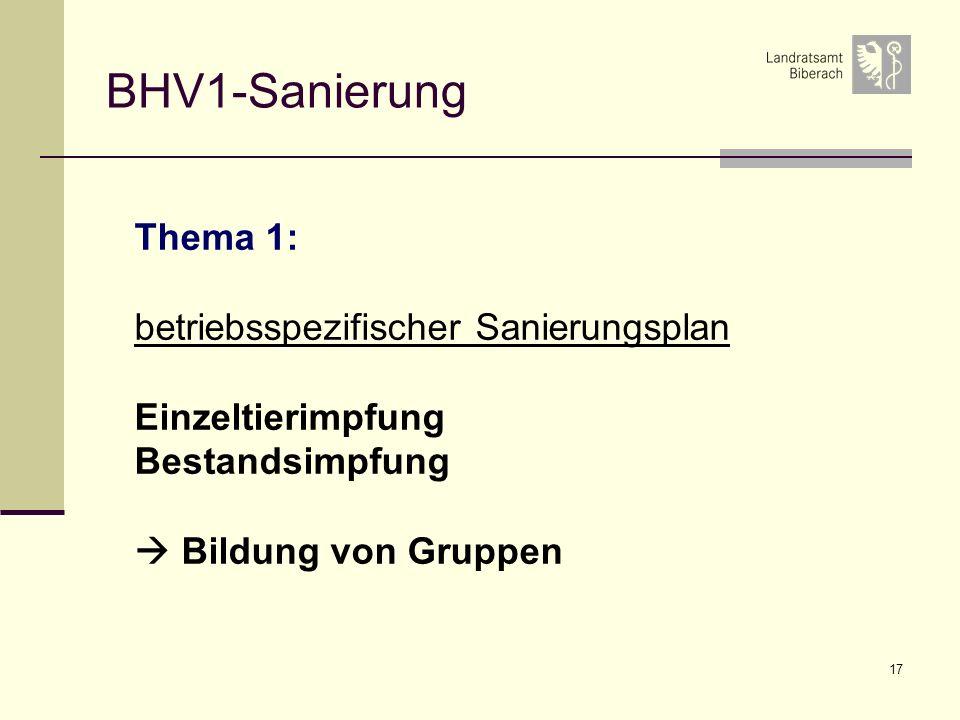 17 BHV1-Sanierung Thema 1: betriebsspezifischer Sanierungsplan Einzeltierimpfung Bestandsimpfung Bildung von Gruppen