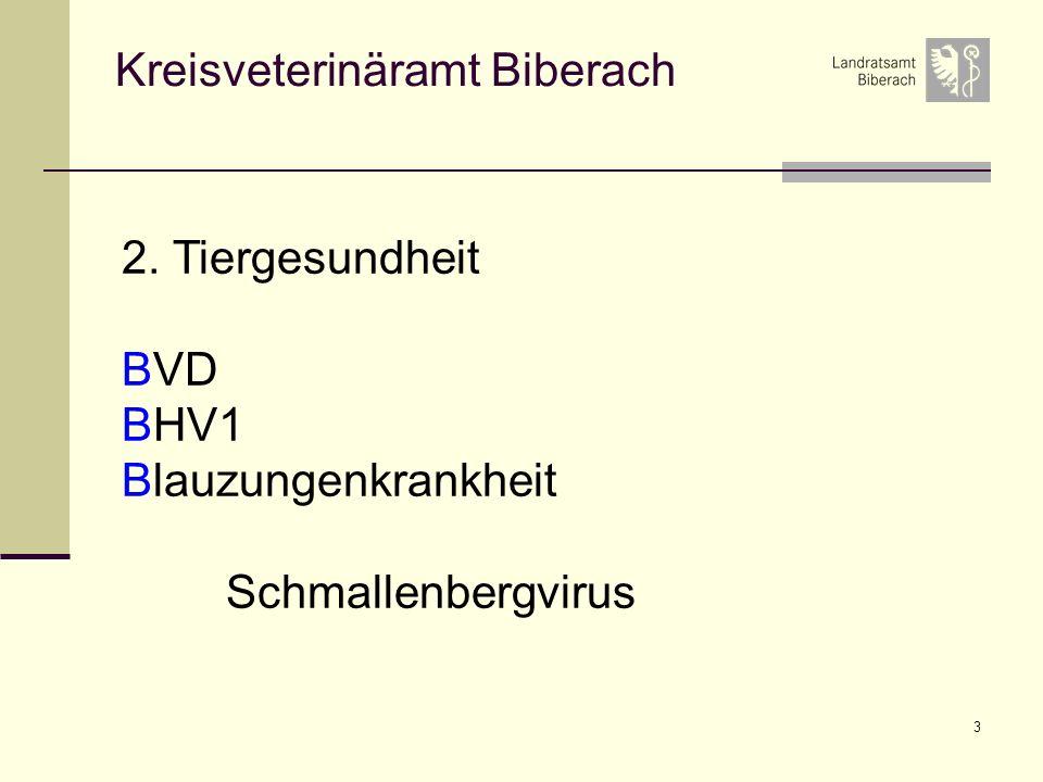 3 Kreisveterinäramt Biberach 2. Tiergesundheit BVD BHV1 Blauzungenkrankheit Schmallenbergvirus