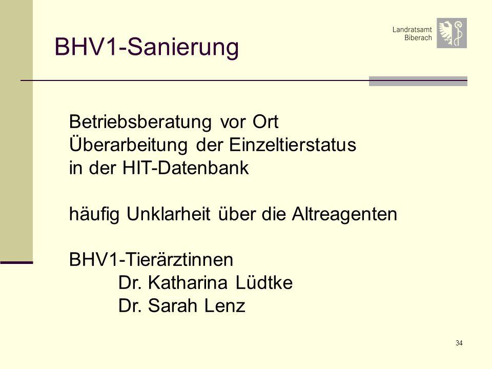 34 BHV1-Sanierung Betriebsberatung vor Ort Überarbeitung der Einzeltierstatus in der HIT-Datenbank häufig Unklarheit über die Altreagenten BHV1-Tierärztinnen Dr.