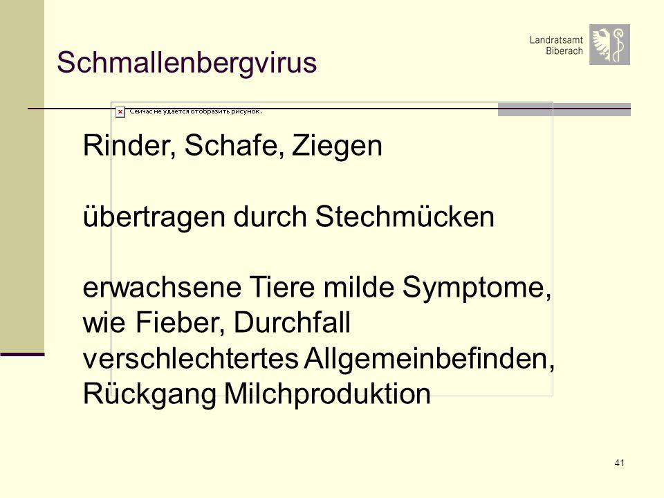 41 Schmallenbergvirus Rinder, Schafe, Ziegen übertragen durch Stechmücken erwachsene Tiere milde Symptome, wie Fieber, Durchfall verschlechtertes Allg