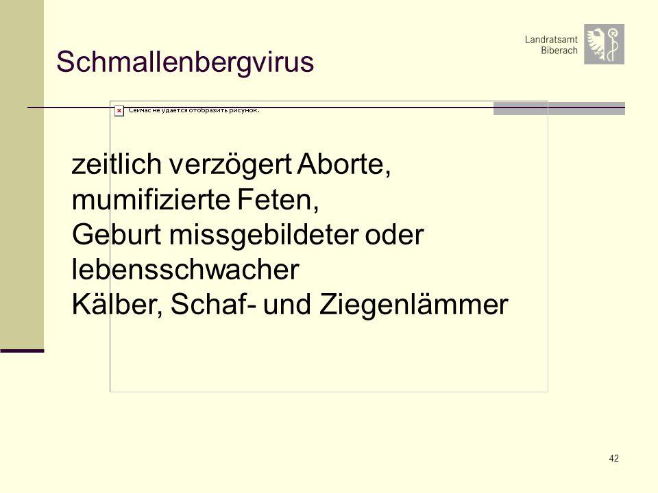 42 Schmallenbergvirus zeitlich verzögert Aborte, mumifizierte Feten, Geburt missgebildeter oder lebensschwacher Kälber, Schaf- und Ziegenlämmer