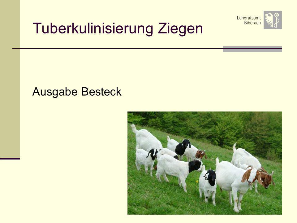 48 Tuberkulinisierung Ziegen Ausgabe Besteck