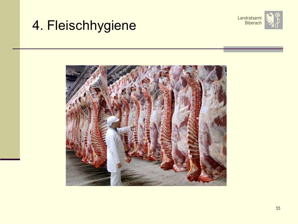 55 4. Fleischhygiene
