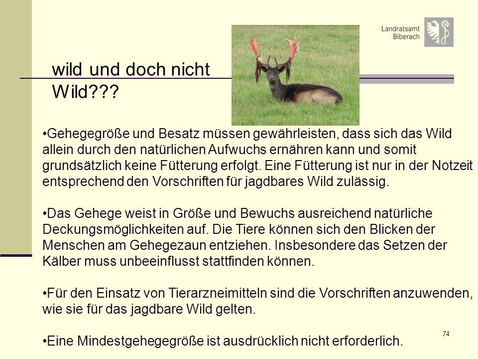 74 Gehegegröße und Besatz müssen gewährleisten, dass sich das Wild allein durch den natürlichen Aufwuchs ernähren kann und somit grundsätzlich keine F