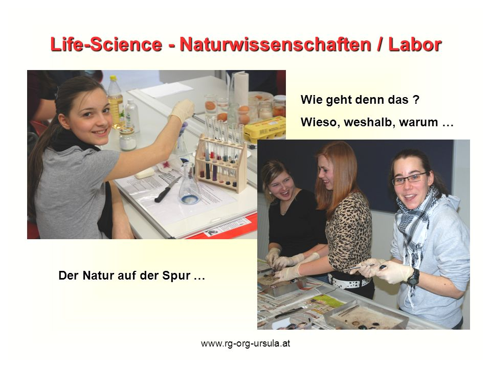 www.rg-org-ursula.at Die Bibliothek lädt ein...