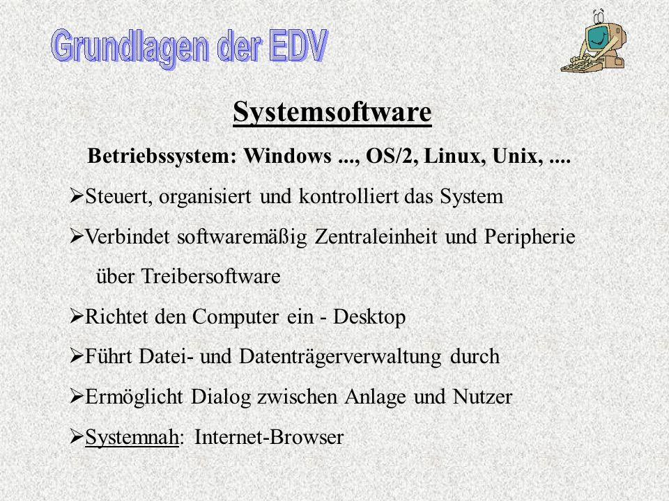 Software der EDV-Anlage Programme und Datenbestände (Texte, Bilder, Kunden- Daten, Artikeldaten,...) Softwarearten Systemsoftware – nötig zum Betrieb
