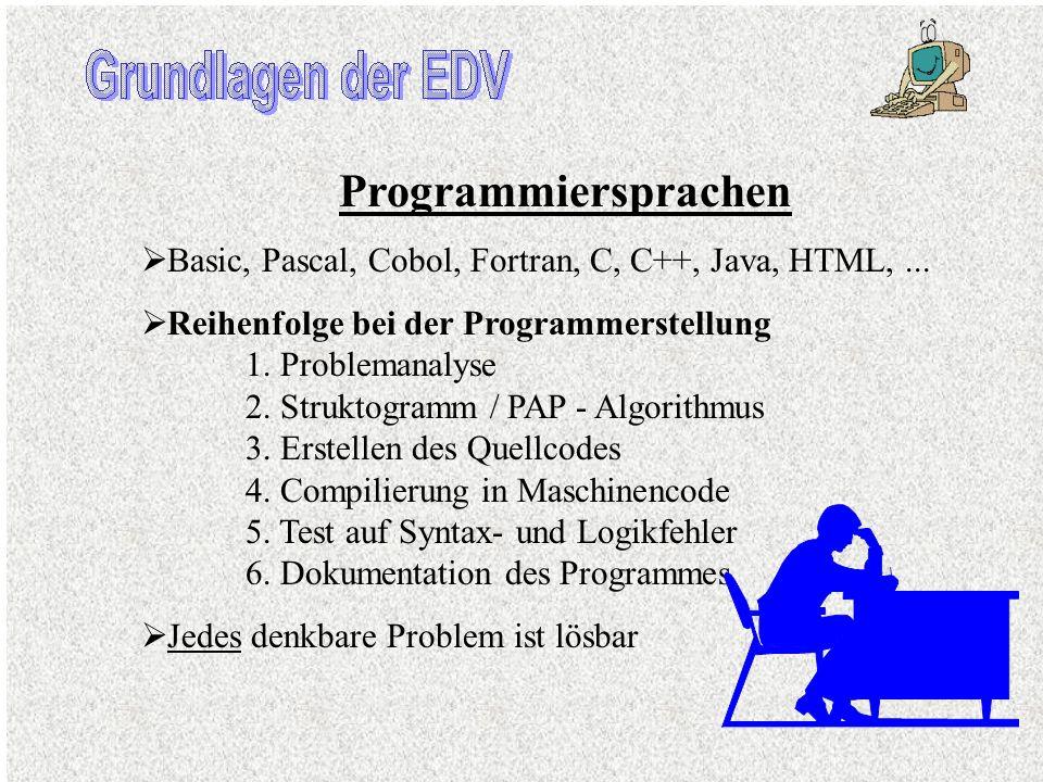 Anwendersoftware Fertige Problemlösungen für alle denkbaren Probleme Anwenderwerkzeuge erleichtern die Problemlösung (hier z.B. die Software aus dem H