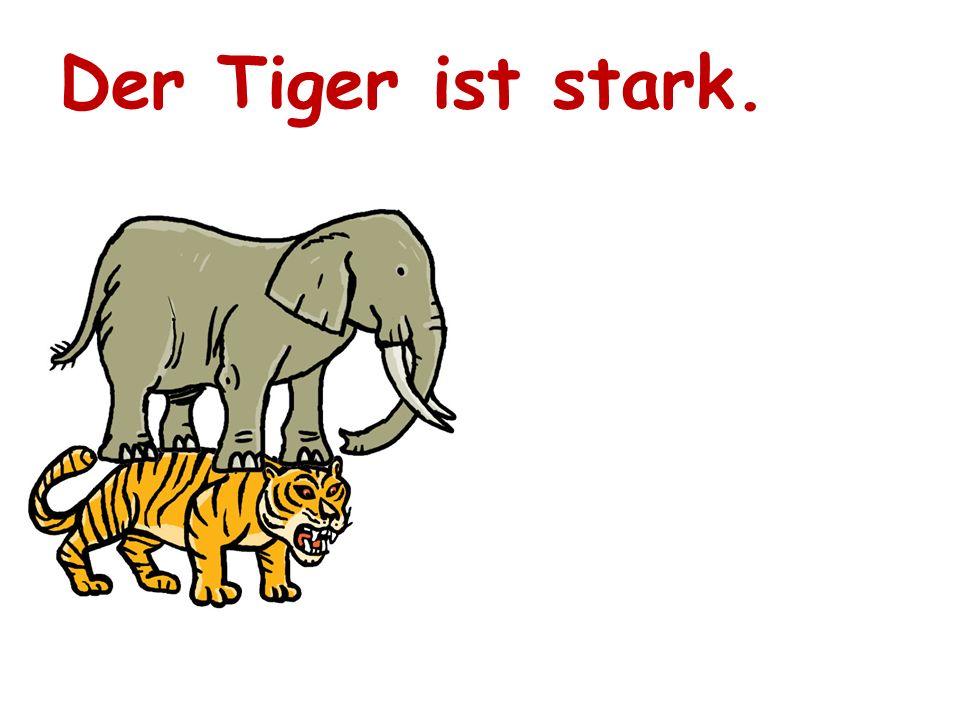 Der Tiger ist stark.