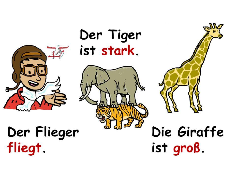 Der Flieger fliegt. Der Tiger ist stark. Die Giraffe ist groß.