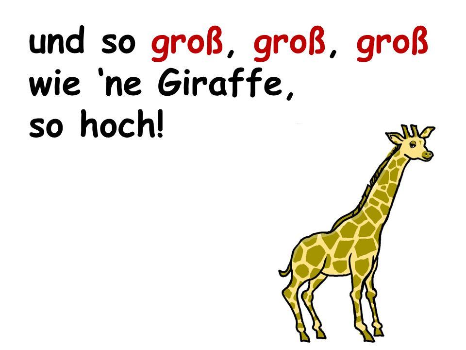 und so groß, groß, groß wie ne Giraffe, so hoch!