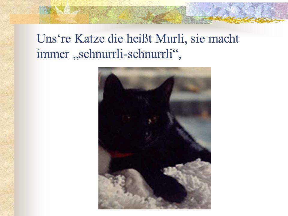 Unsre Katze die heißt Murli, sie macht immer schnurrli-schnurrli,