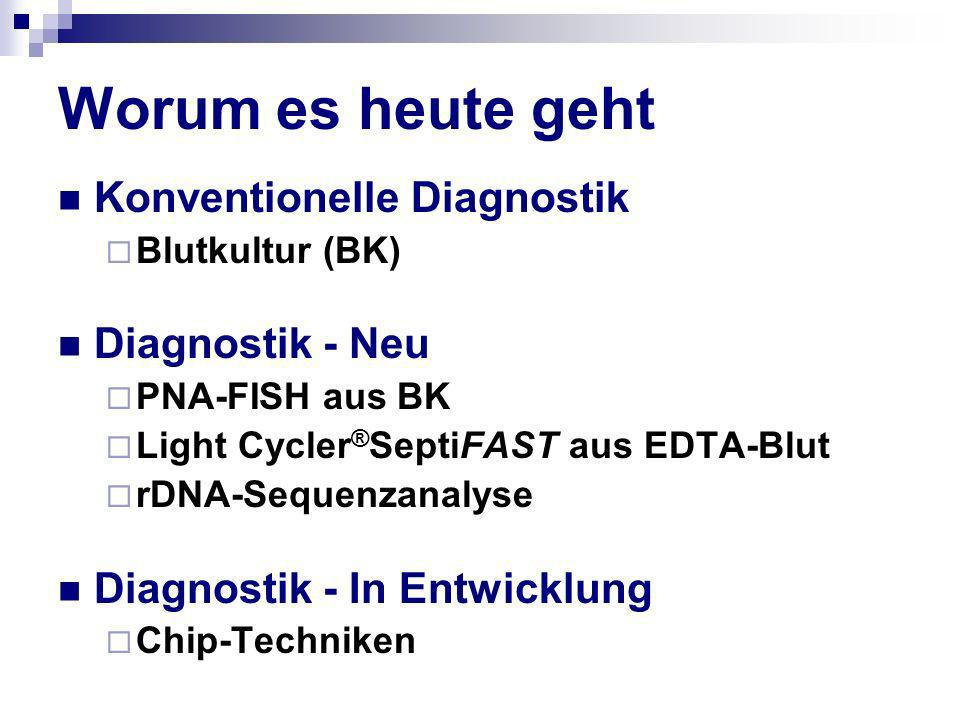 Worum es heute geht Konventionelle Diagnostik Blutkultur (BK) Diagnostik - Neu PNA-FISH aus BK Light Cycler ® SeptiFAST aus EDTA-Blut rDNA-Sequenzanal