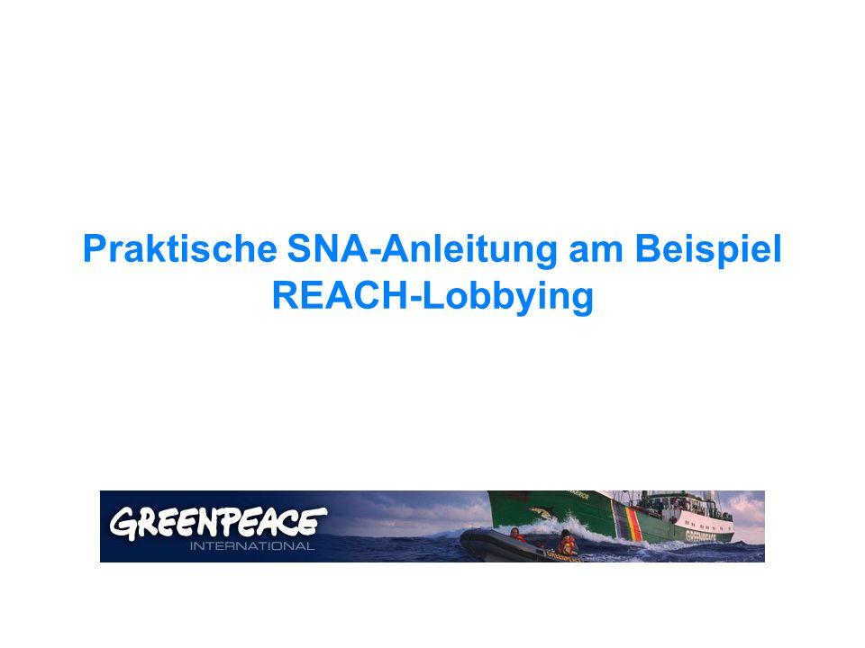 Praktische SNA-Anleitung am Beispiel REACH-Lobbying