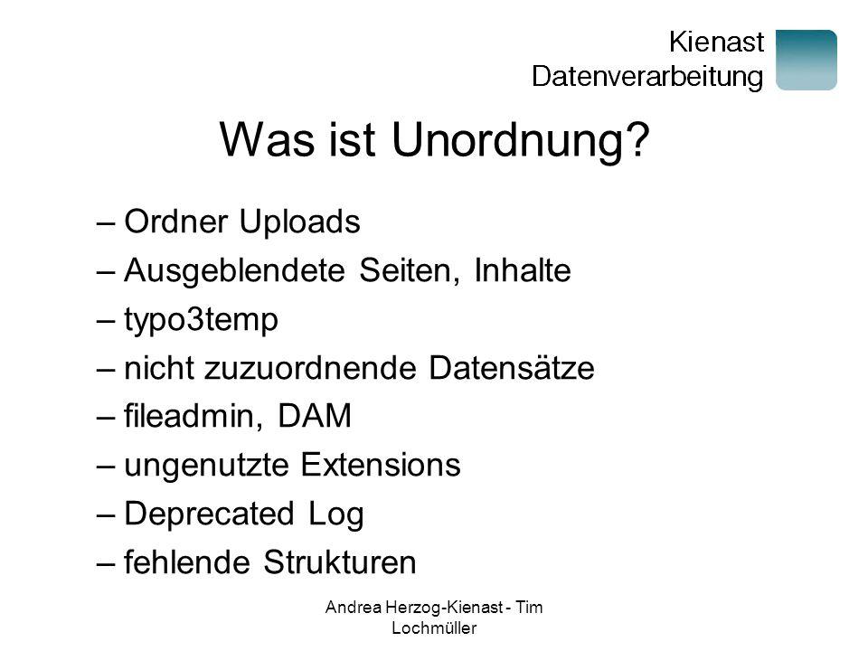 Andrea Herzog-Kienast - Tim Lochmüller Was ist Unordnung.
