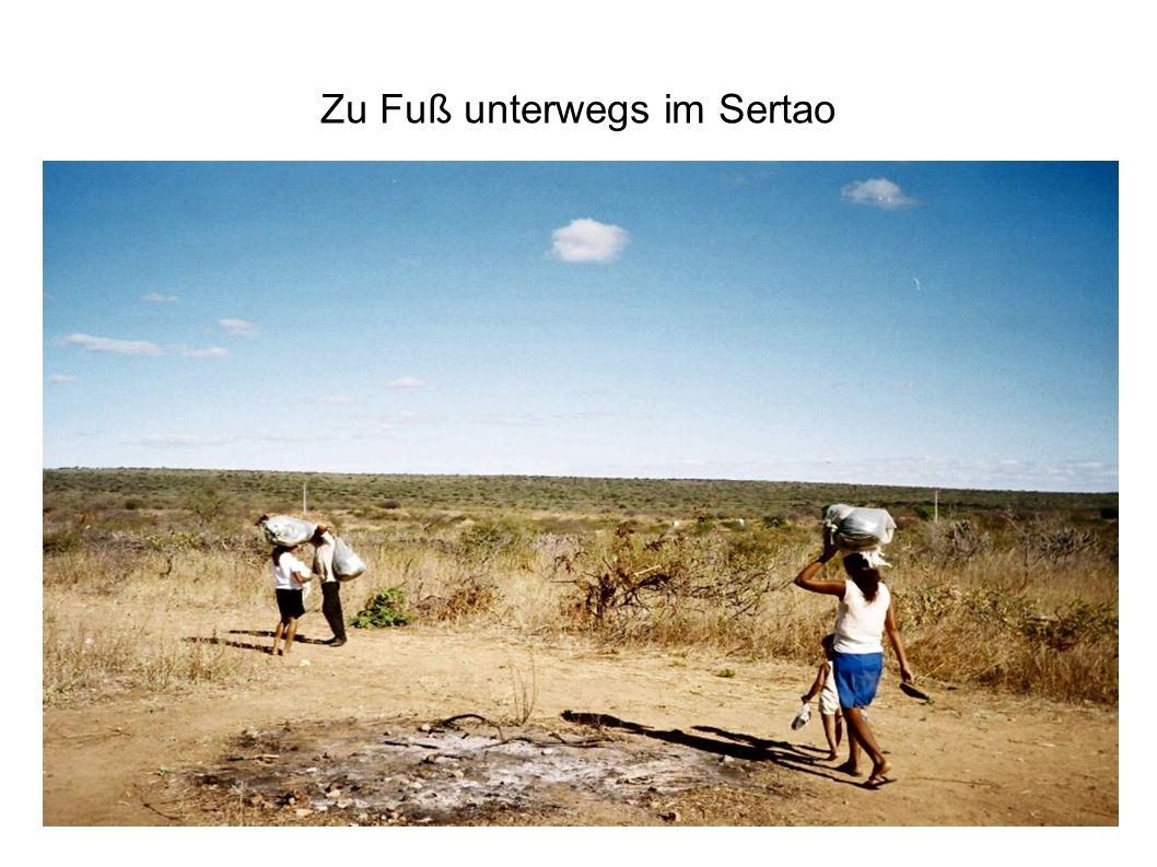 Zu Fuß unterwegs im Sertao