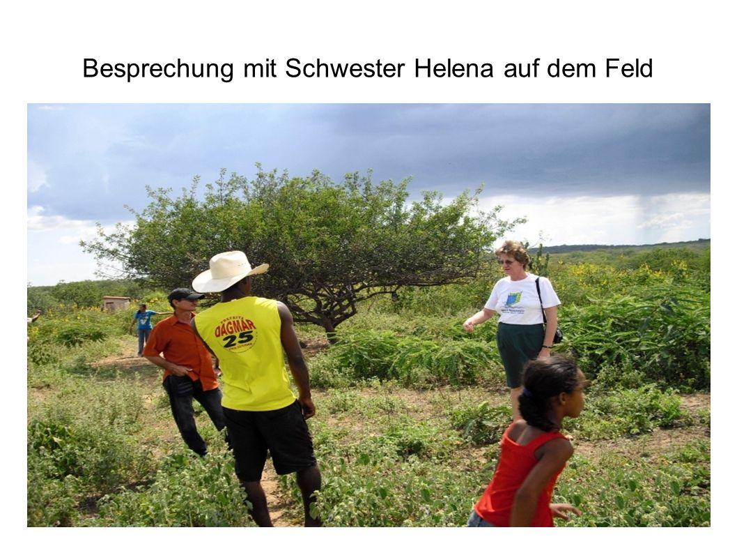 Besprechung mit Schwester Helena auf dem Feld
