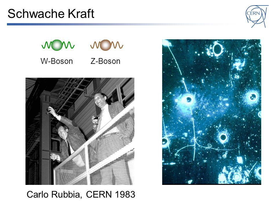 Schwache Kraft Carlo Rubbia, CERN 1983 W-BosonZ-Boson