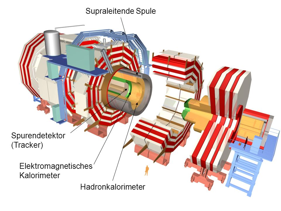 Supraleitende Spule Spurendetektor (Tracker) Elektromagnetisches Kalorimeter Hadronkalorimeter Myondetektoren