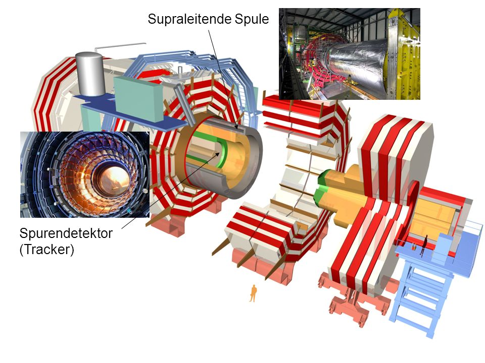 Spurendetektor (Tracker) Supraleitende Spule Elektromagnetisches Kalorimeter