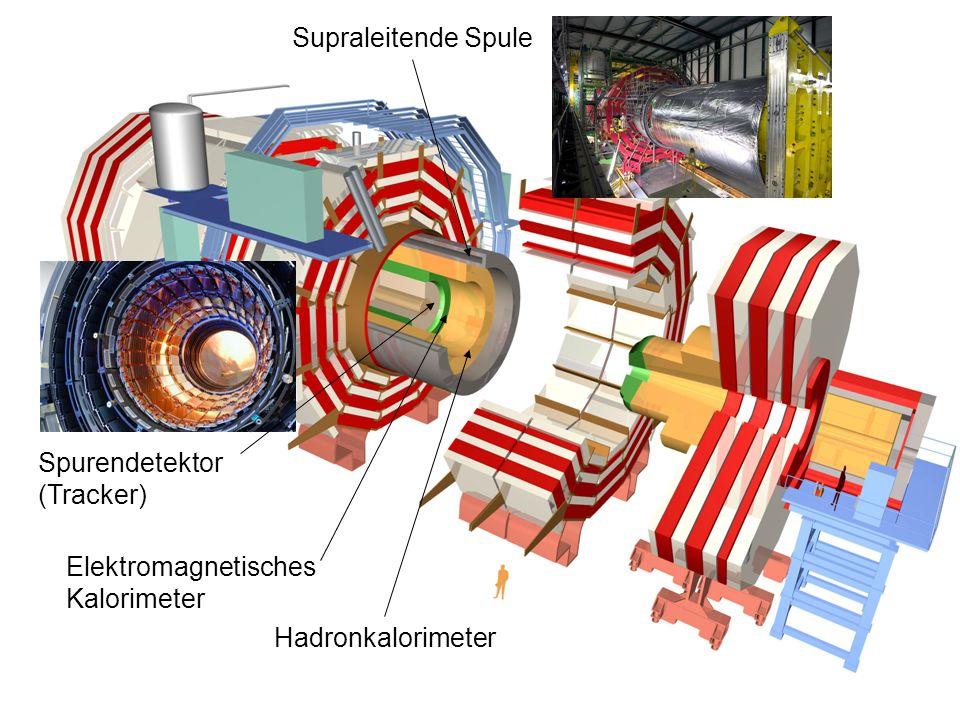 Spurendetektor (Tracker) Supraleitende Spule Elektromagnetisches Kalorimeter Hadronkalorimeter