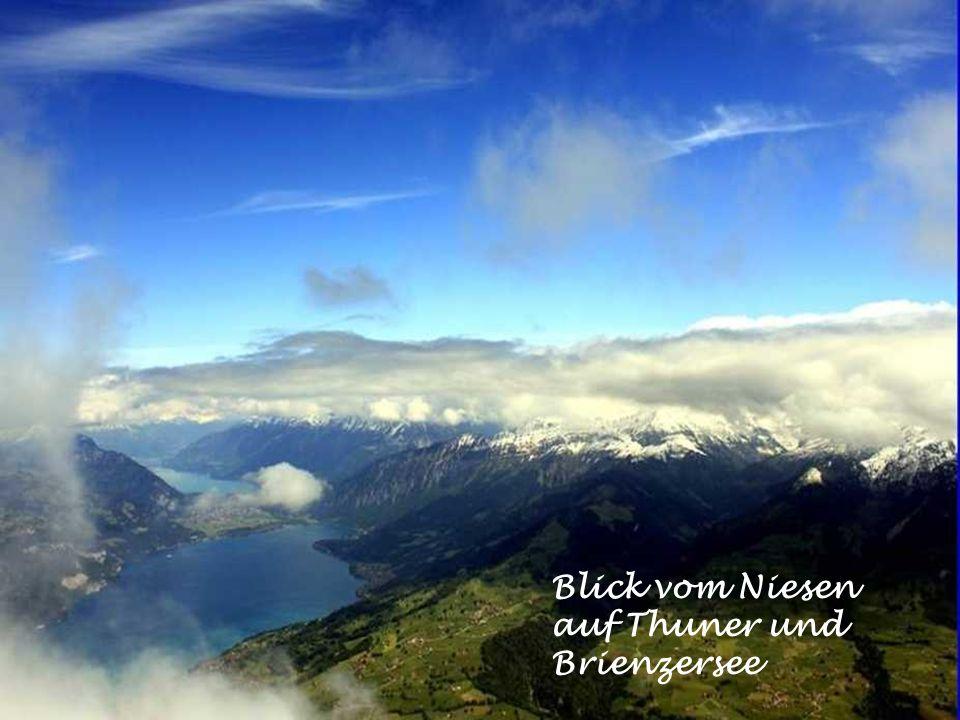 Blick vom Beatenberg auf denn Thunersee und Berneralpen