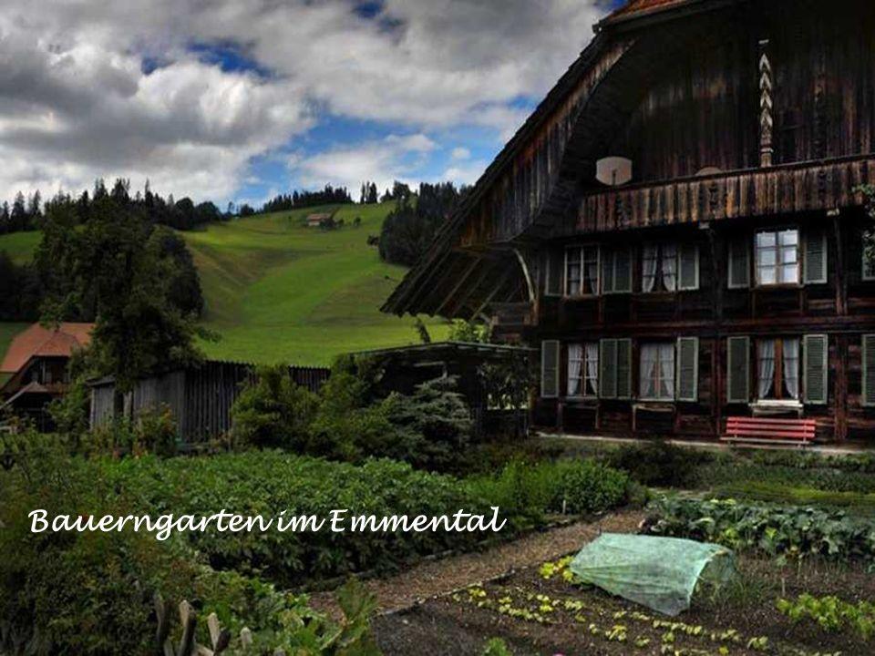 Blick auf Iseltwald am Brienzersee