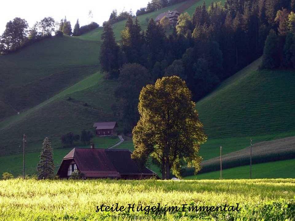 Schloss Schadau am Thunersee