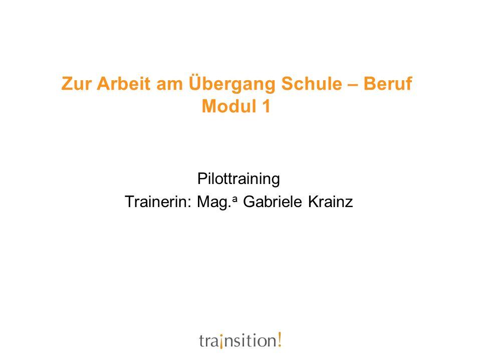 Zur Arbeit am Übergang Schule – Beruf Modul 1 Pilottraining Trainerin: Mag. a Gabriele Krainz
