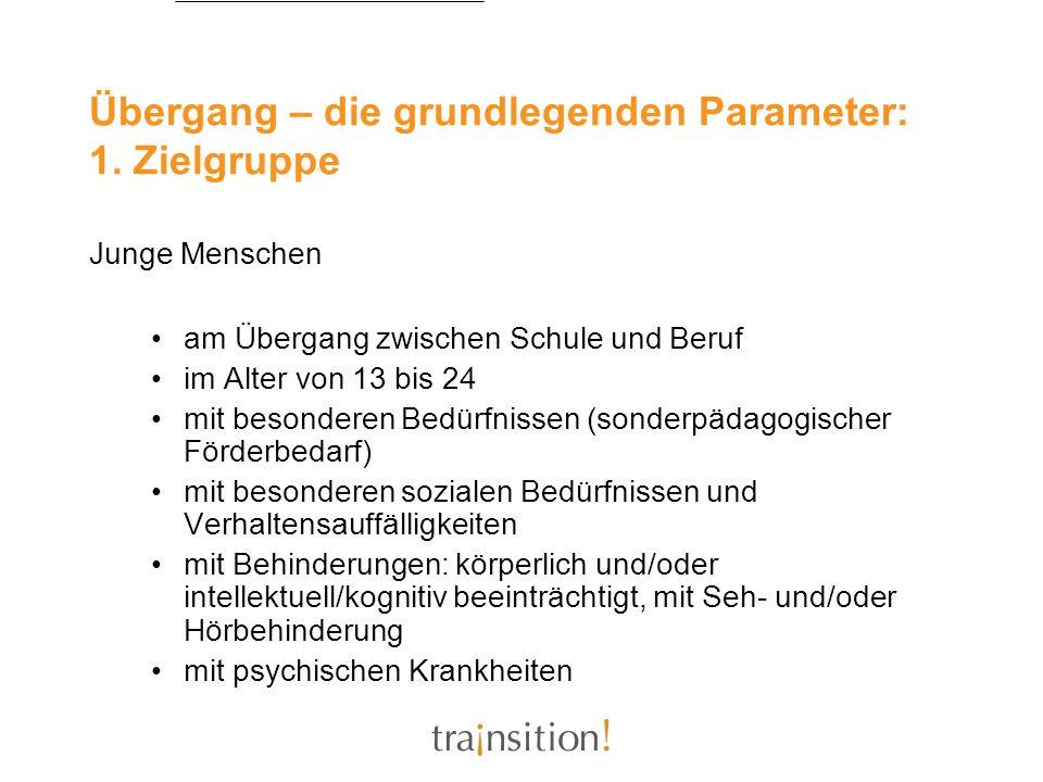 Übergang – die grundlegenden Parameter: 1. Zielgruppe Junge Menschen am Übergang zwischen Schule und Beruf im Alter von 13 bis 24 mit besonderen Bedür